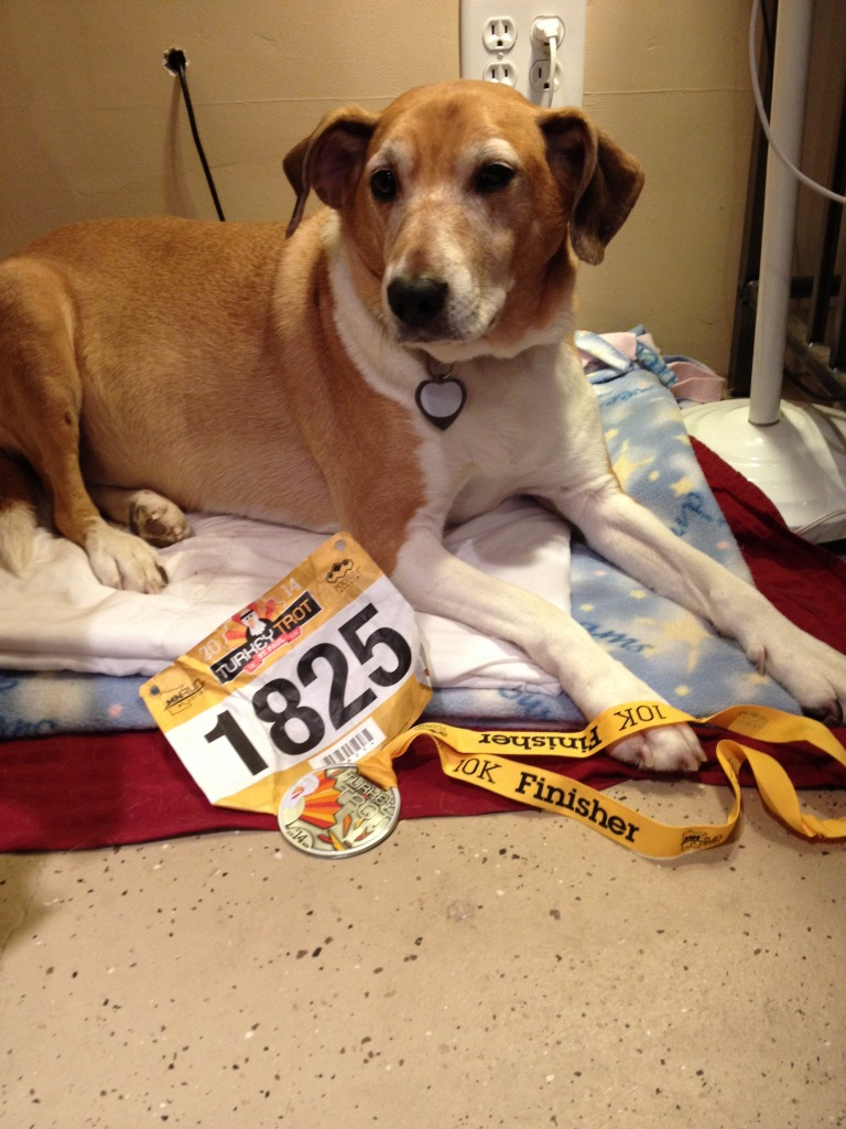 Echo earned the Race Medal too!